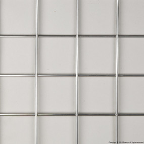 "2"" Welded Stainless Steel Mesh (3mm wire diameter) - 8' x 4' Panel"